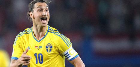 Irlande-Suède : Un supporter irlandais s'offre les droits TV | Marketing sportif | Scoop.it