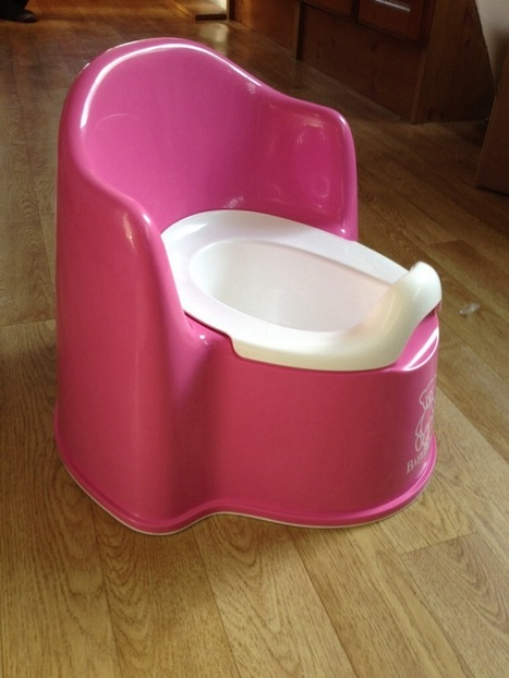 Information on History and Types of Potty Chair | Learn How to Potty Train in 3 Days | Scoop.it