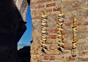 Colmurano, il regno delle ''Paccucce'' | Le Marche un'altra Italia | Scoop.it