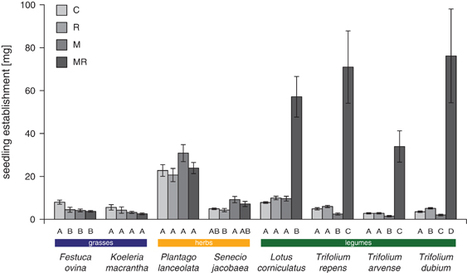 A widespread plant-fungal-bacterial symbiosis promotes plant biodiversity, plant nutrition and seedling recruitment | Plant-Microbe Interaction | Scoop.it