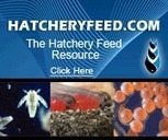 Aquafeed.com - Providing News and Information to the Aquafeed Industry | Aquaculture | Scoop.it