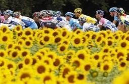 The Tour de France, again, has no women cyclists - Washington Post (blog) | Women's lifestyle | Scoop.it