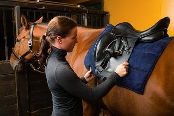 Studying the Rider-Saddle-Horse Interface - TheHorse.com | Back Pain in Horses | Scoop.it