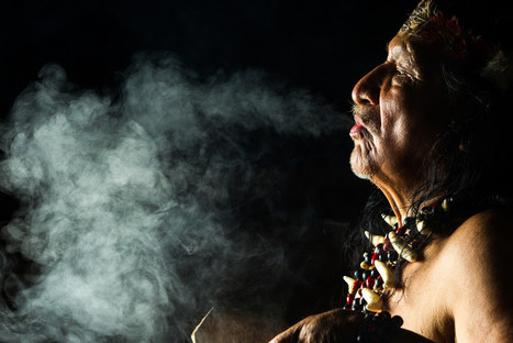 Why do humans have an innate desire to get high? | Ayahuasca  アヤワスカ | Scoop.it