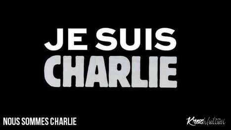 #CharlieHebdo : Hommage d'Ankama et des joueurs | Krozmotion | Scoop.it