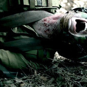 FrightFest To Screen CANNON FODDER the First Israeli Zombie Film - Twitch | Mis muvis | Scoop.it