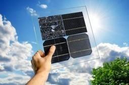 [innovation] Cellule photoélectrochimique inspirée par les mites   Le flux d'Infogreen.lu   Scoop.it