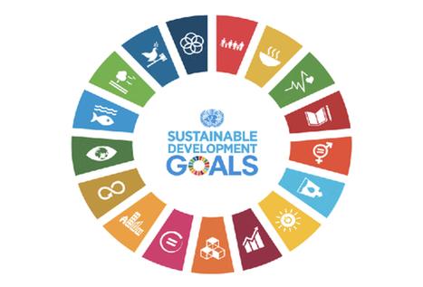 L'ONU cherche la prochaine génération de leaders durables!   Say Yess   Tous pour un : le DD au coeur de notre société   Scoop.it