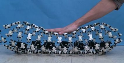 Robotique : un bel exemple de biomimétisme inspiré du ver de terre | Ressources pour la Technologie au College | Scoop.it