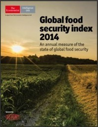 Food security is on the rise - Farming Africa   FarmingAfrica.net   Scoop.it