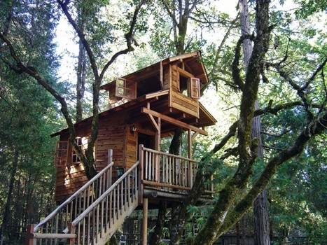 Things to Do For Building Long Lasting Tree-house | Tree House | Scoop.it