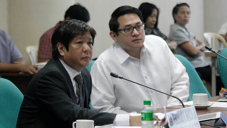 Senate panel to push for one-year SK polls postponement | Filipino Young People | Scoop.it
