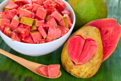 Key Health Benefits of Guava Fruit | Health News | Scoop.it