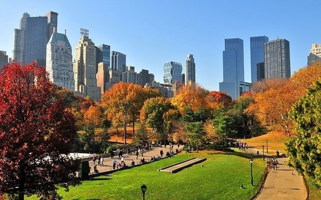 New York attractions: what to see and do in autumn | ENGLISH ON THE ROAD | Scoop.it