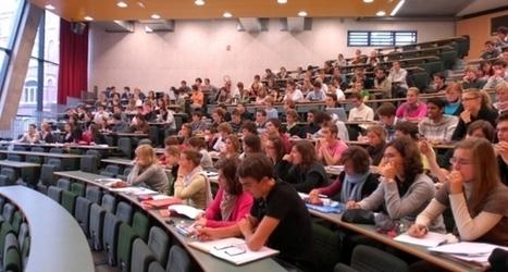 Un nouveau label de l'État pour l'enseignement supérieur privé   Enseignement Supérieur et Recherche en France   Scoop.it