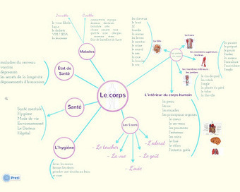 Mon blog: La carte conceptuelle | Medic'All Maps | Scoop.it