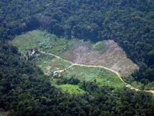 Brasil pode atingir meta de redução de desmatamento em 2012 | MundoGEO | Agronegócio | Scoop.it