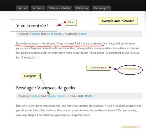 Chrome : 2 services pour capturer et annoter vos pagesweb   François MAGNAN  Formateur Consultant   Scoop.it