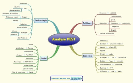 Mindmapping pour entreprise : analyses Pest et 4 P | Cartes mentales | Scoop.it
