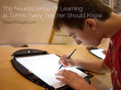 """The Neuroscience Of Learning : 41 Terms Every Teacher Should Know"" 