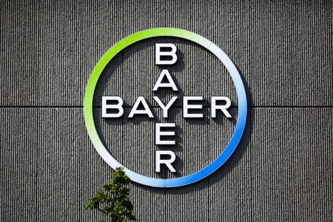 #Bayer mulls dropping #Monsanto name as brand headache cure | Grain du Coteau : News ( corn maize ethanol DDG soybean soymeal wheat livestock beef pigs canadian dollar) | Scoop.it
