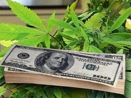 Will High Marijuana Taxes Encourage Black Markets? | Exploring Current Issues | Scoop.it