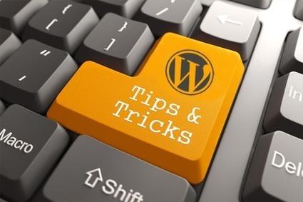 Few good Tricks To Improve Your WordPress Theme | Open Source CMS Development | Scoop.it