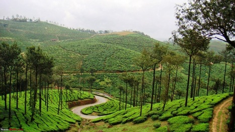 Kerala – Feel The Touch Of Nature In This Beautiful Paradise | Ooty - The perfect Hill resort for tourists | Scoop.it