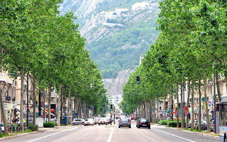 Grenoble to replace street advertising with trees and 'community spaces' - Telegraph   Peer2Politics   Scoop.it