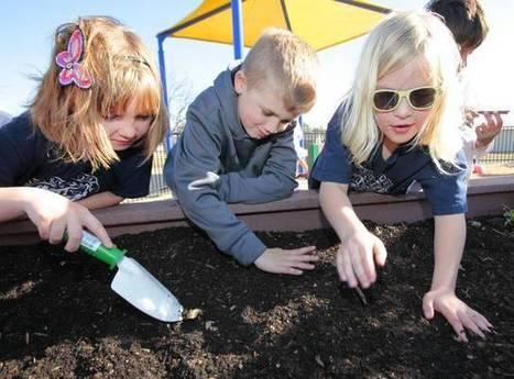 Edmond students grow crops, cultivate imagination in school garden - NewsOK.com | Wellington Aquaponics | Scoop.it