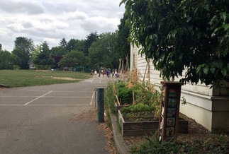 Don't eat produce from any Portland school garden, officials warn | School Gardening Resources | Scoop.it