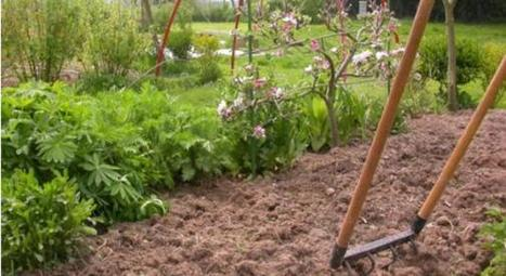 La grelinette : outil miracle et multifonction du jardinier bio   bio nature   Scoop.it