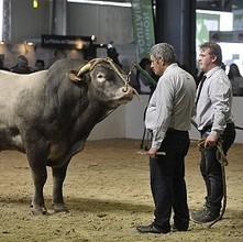 La «  première ferme d'Europe » a rendez vous à Bordeaux | Agriculture en Dordogne | Scoop.it