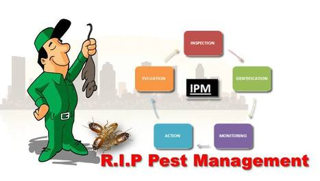 Integrated Pest Management and Its Benefits | R.I.P. Pest Management | Pest Exterminator Northern Beaches | Scoop.it