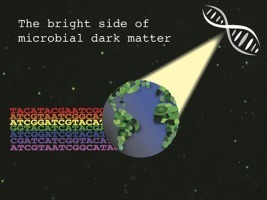 The bright side of microbial dark matter: lessons learned from the uncultivated majority - Current Opinion in Microbiology | Plant Gene Seeker -PGS | Scoop.it
