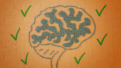 Why Your Brain is Hooked on Being Right (and What You Can Do About It) | BeBetter | Scoop.it