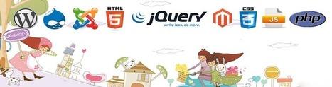 Website Design, CMS Development,  Ecommerce Solutions & Internet Marketing | services | Scoop.it