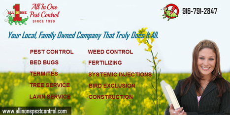 Pest Control Service in Sacramento | All in One Pest Control | Scoop.it