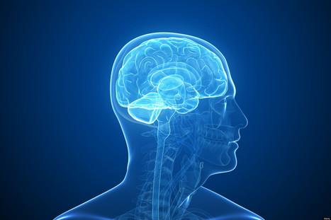 Le gouvernement américain veut cartographier le cerveau humain | le monde de la e-santé | Scoop.it