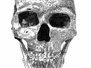 No hemos dejado de evolucionar - Taringa! | Psicología evolucionista | Scoop.it