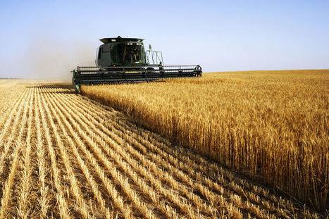 L'agriculture bio produit autant et rapporte plus aux agriculteurs | Questions de développement ... | Scoop.it