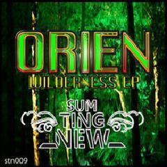 Orien – Wilderness EP (2014) | Album Leak | Scoop.it