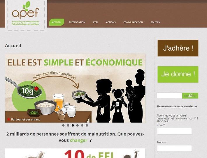 La meilleure façon de créer un site WordPress en plusieurs langues | TIC et TICE mais... en français | Scoop.it