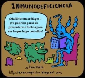 229inmunodeficiencia.png (320x294 pixels) | Inmunodeficiencia secundaria | Scoop.it