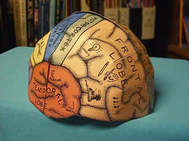 Brain Hemisphere Hat (made of paper) | Critical Thinking Thesaurus | Scoop.it