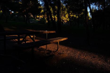 Rafa García Photography: X-E2 in the pinewoods | Catch me if you can | Fujifilm X Series APS C sensor camera | Scoop.it