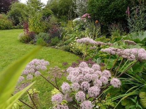 Carrefour des amateurs de beaux jardins - MERIGNIES jardin de la plaine du moulin | Arboretums, parcs et jardins,jardin botanique | Scoop.it