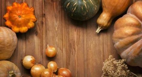 Les 10 aliments santé de l'automne | dietconseil actualite dietetique nutrition évolution | Scoop.it