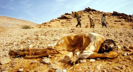 Darfur Genocide | Erica Genocide | Scoop.it