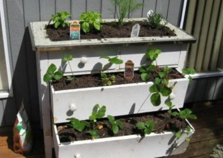 How to Start a Low-Cost Patio Garden | One Cent At A Time | Container Gardening | Scoop.it